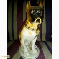 Фарфоровая статуэтка собаки, фигурка собаки - бульдог, увековеченный в фарфоре