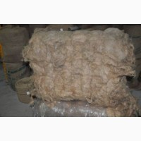 Пакля пеньковая длинночесанная (в тюках по 60-70 кг)