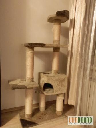 Когтеточки для кошек в Тернополе. Сравнить цены, купить