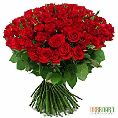 Купить розы крупным оптом цена заказ цветов на дом в минске