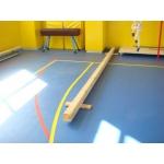 Гимнастическое оборудование для учебных заведений от производителя