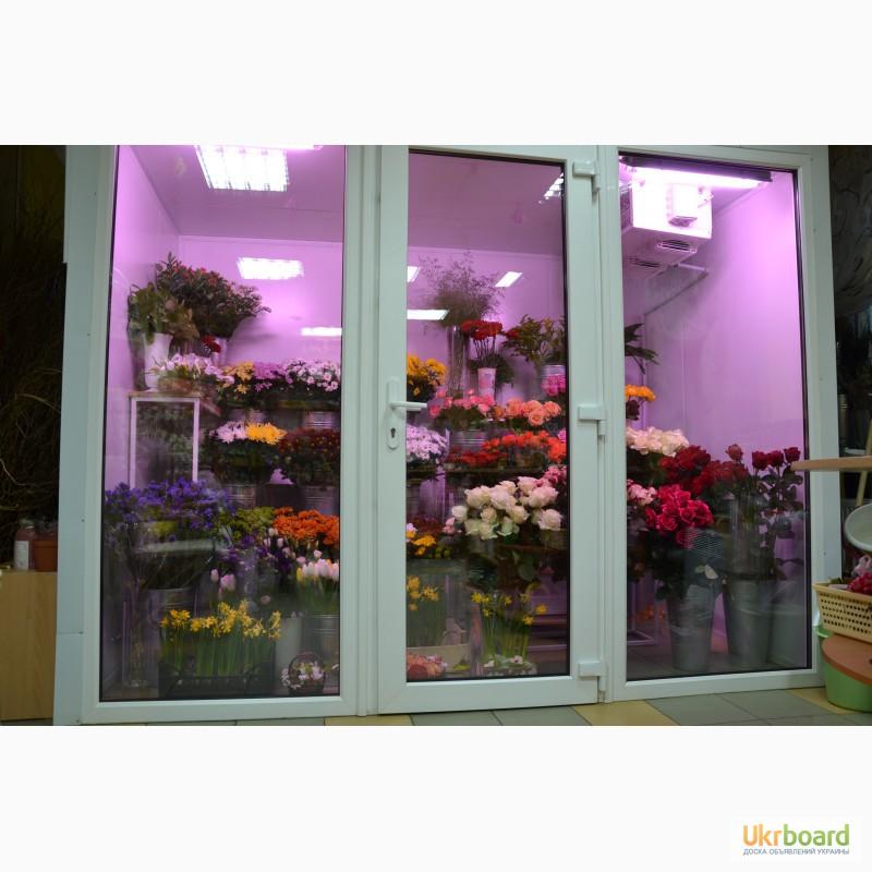 Холодильная камера для цветов б.у