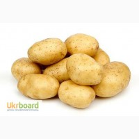 Покупаем картофель
