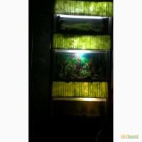 Продам аквариум с подставкой