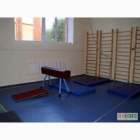 Оборудование гимнастическое: Козел, конь, брусья, бревно, перекладина, мостик гимн, маты
