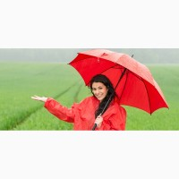 Sponsa зонты