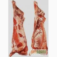 Реализуем мясо свинины, говядины