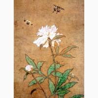 Продам саженцы Пиона и много других растений (опт от 1000 грн)