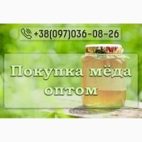 Выкупим Мед, Воск, Прополис, Пергу
