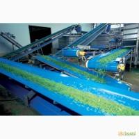 Конвейерные ленты из ПВХ синего цвета для сельскохозяйственной и пищевой промышленности