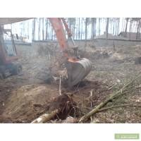 Корчевание пней. Удаление пней Киев