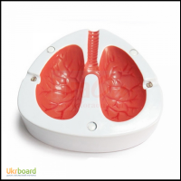 Кашляющая і кричуща попільничка у вигляді легких, Coughing Ashtray Lungs
