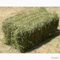 Продам сено в тюках. Есть доставка на дом сена, зерна, продуктов