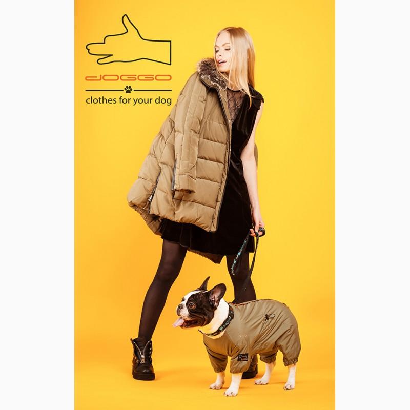Демисезонная одежда для французского бульдога - ТМ DOGGO