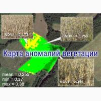 Создание карт вегетации полей на основе космоснимков, работаем по Украине