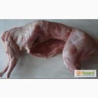 Продаю мясо кролика(гурт роздріб)