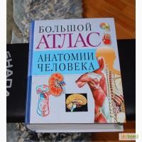 Большой атлас анатомии человека - Воробьев В.П