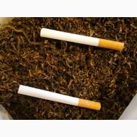 Табак для забивки в гильзы, самокруток и трубки, ферментированный лапша