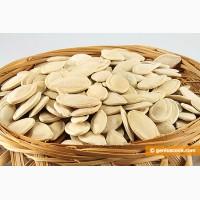 Куплю семена тыквы в любых количествах