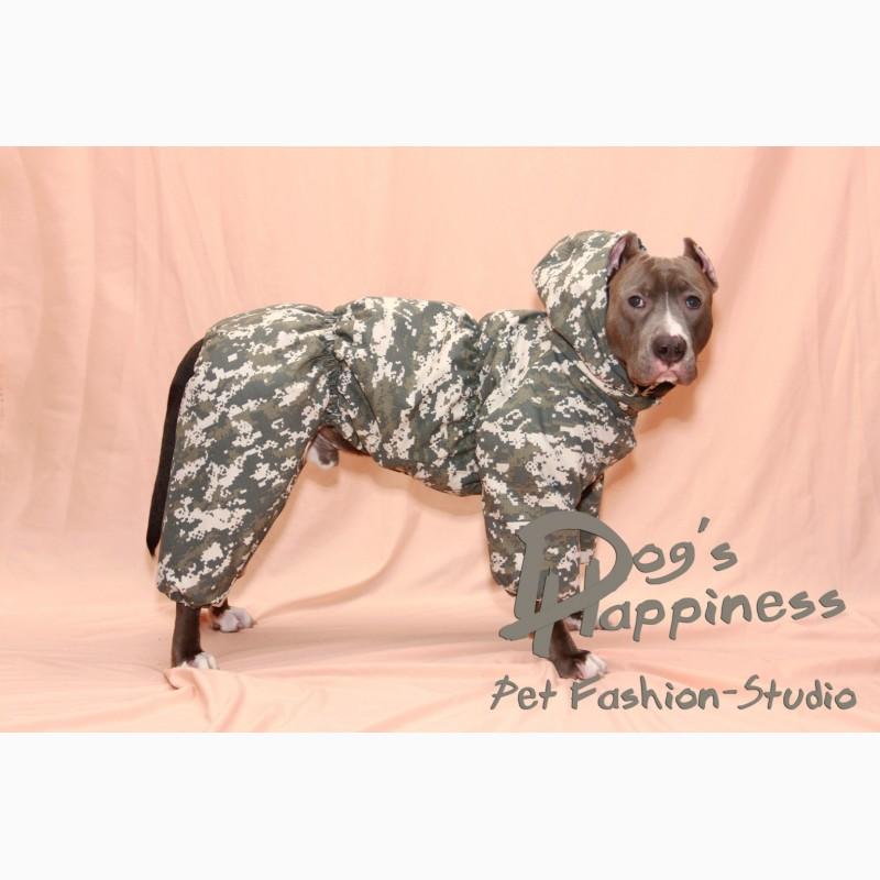 Фото 2. Одежда для собак, ксоло, стаффа, лабрадора, к.корсо, риджбека, питбуля, боксера, бульдога