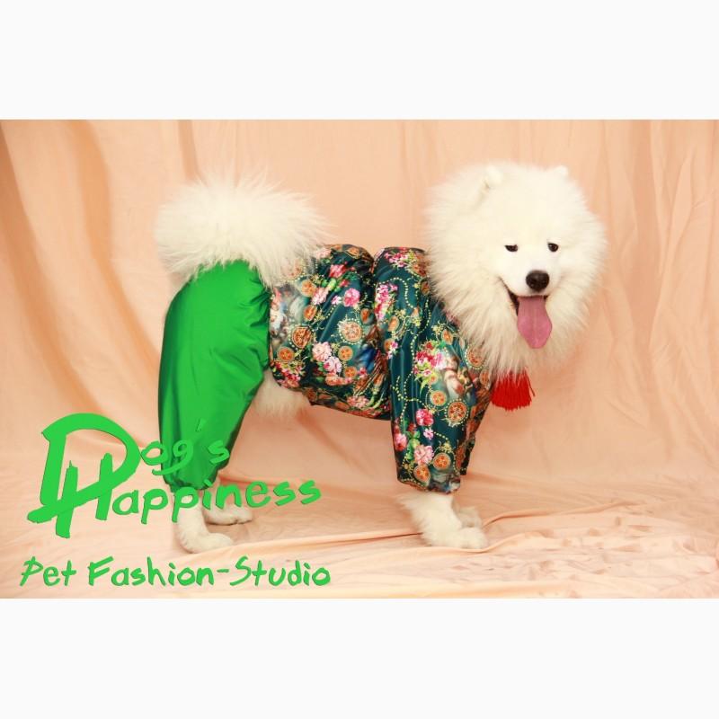 Фото 3. Одежда для собак, ксоло, стаффа, лабрадора, к.корсо, риджбека, питбуля, боксера, бульдога