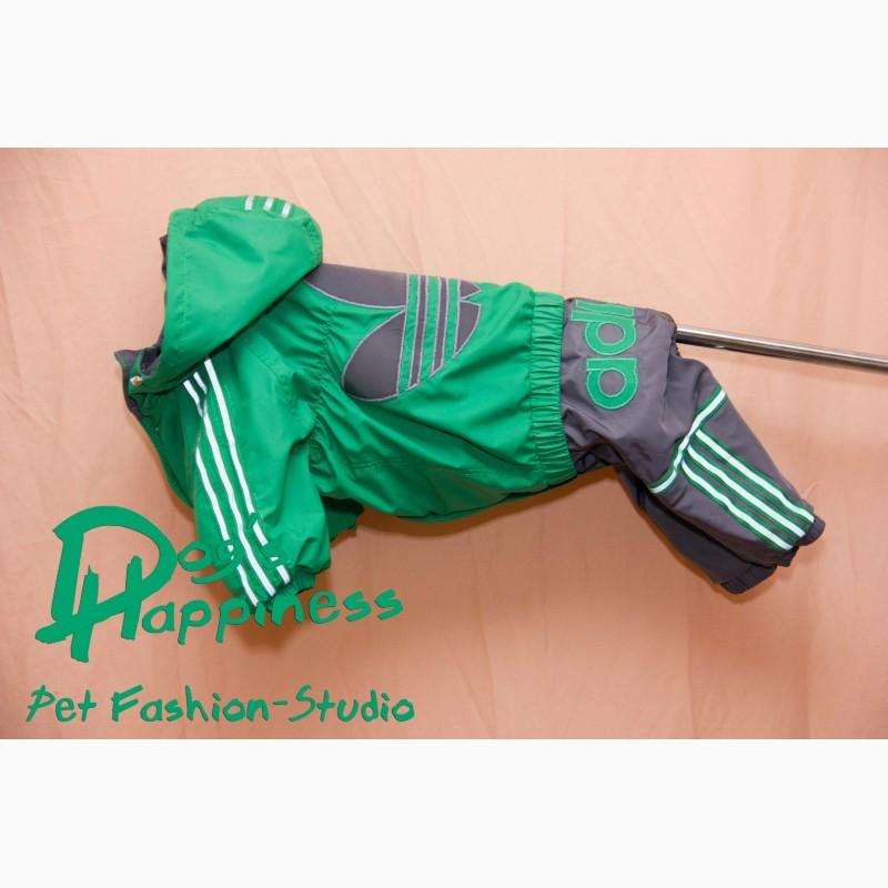 Фото 4. Одежда для собак, ксоло, стаффа, лабрадора, к.корсо, риджбека, питбуля, боксера, бульдога