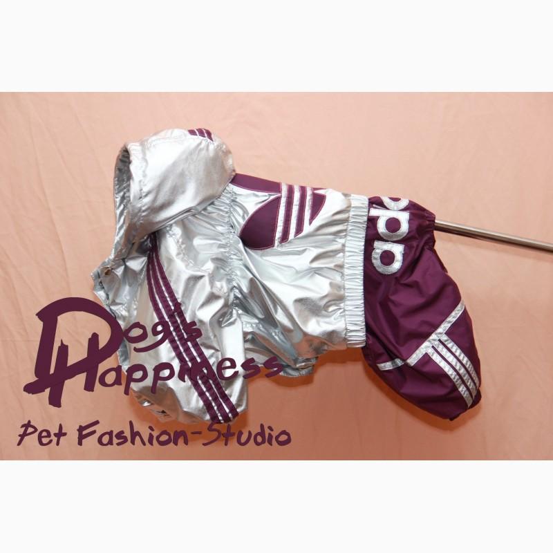 Фото 5. Одежда для собак, ксоло, стаффа, лабрадора, к.корсо, риджбека, питбуля, боксера, бульдога