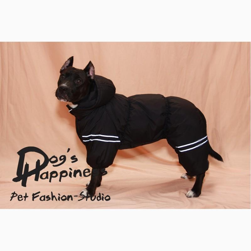 Фото 8. Одежда для собак, ксоло, стаффа, лабрадора, к.корсо, риджбека, питбуля, боксера, бульдога