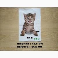 Наклейка котик номер 5 для ванны, детской комнаты