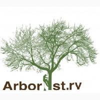 Спилювання валка дерев. Обрізка зрізання дерев. Валка дерев. Арбористика дерева.Різка дров