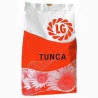Семена подсолнечника Тунка (Лимагрейн)
