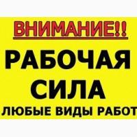 Бригада грузчиков, не дорого! Одыкватные цены