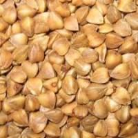 Семена гречихи сорт Син 3/02 элита 1 репр