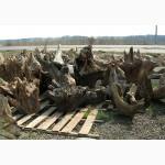 Продам дубовые корневища для ландшафтного дизайна и интерьера