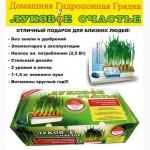 Киев.Домашняя гидропонная грядка Луковое Счастье, выращивание лука дома