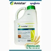 Фунгицид Амистар Экстра – лучшая защита кукурузы, подсолнечника и др