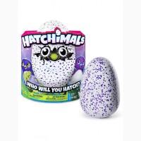 Интерактивная игрушка Яйцо пингвина Hatchimals