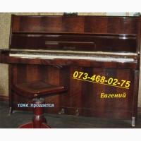 Пианино Petrof - звучащий, 2 педали (не 3). То что надо для работы