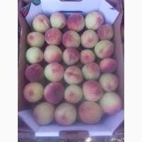 Персик херсон
