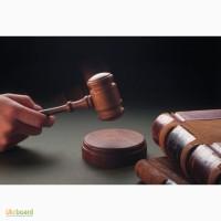 Подготовка искового заявления, апелляционных и кассационных жалоб, ходатайств