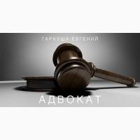 Консультация адвоката в Киеве по любым вопросам