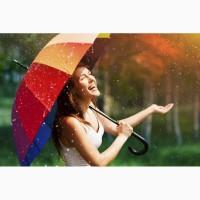 Зонтики оптом