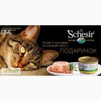 Влажный корм консервы для кошек Шезир