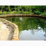 Укрепление береговой зоны водоемов,озер,прудов,скло нов