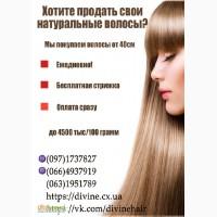 Покупаем волосы в Харькове в день обращения, без пересылки