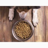 Корм и витамины для собак и кошек. Буча