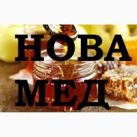Куплю мёд в Кривой роге