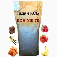 Протеїн Сироватковий Гадяч Техмолпром КСБ 70