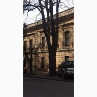 Здание с участком в Одессе 850 м кв, 9 соток, под бизнес