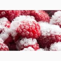 Продажа крупным оптом замороженной малины